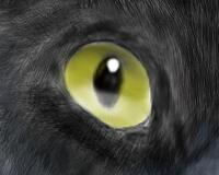 Kiki2012.2.29-3.jpg