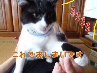 P1030179編集②.jpg