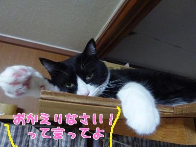 P1030314編集②.jpg