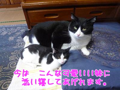 P1030324編集②.jpg