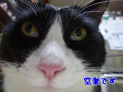 P1030524編集②.jpg