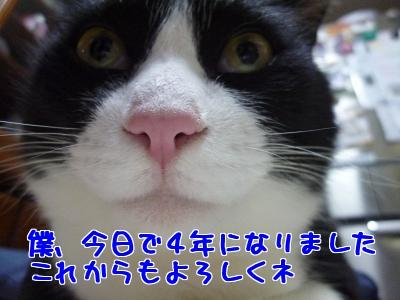 P1030525編集②.jpg