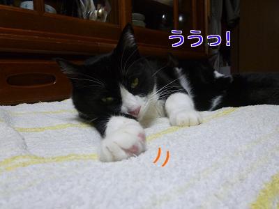 P1030883編集②.jpg