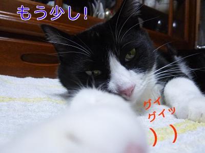 P1030884編集②.jpg