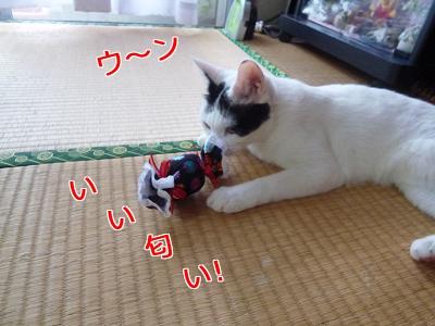 P1040033編集②.jpg