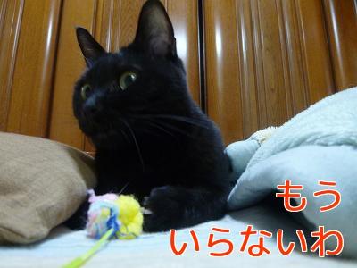P1040381編集②.jpg