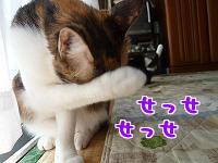 P1040624編集②.jpg