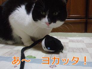 P1042017編集.jpg