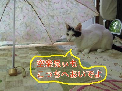 P1050052編集②.jpg