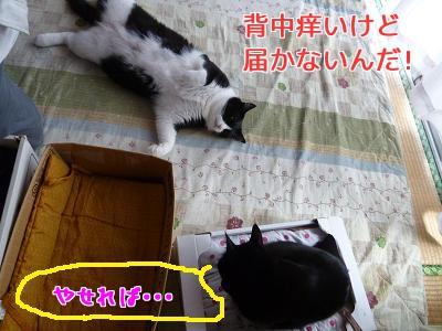 P1050653編集②.jpg