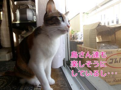 P1060196編集②.jpg