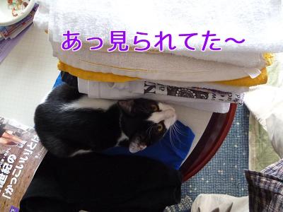 P1060262編集②.jpg