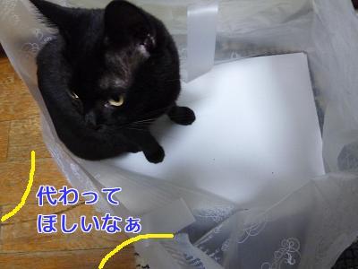 P1060386編集②.jpg