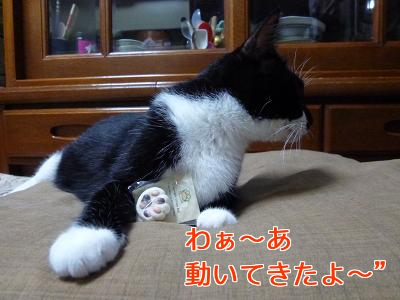 P1060723編集②.jpg