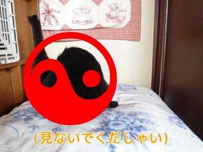 P1060785編集②.jpg