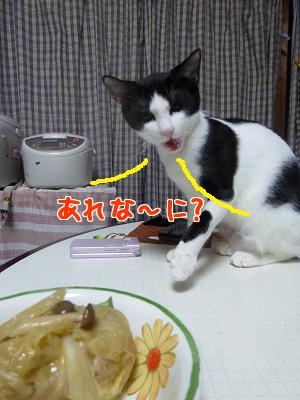 P1070003編集②.jpg