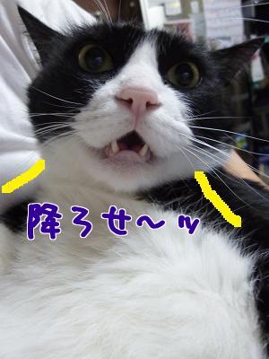 P1070069編集②.jpg