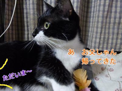 P1070309編集②.jpg