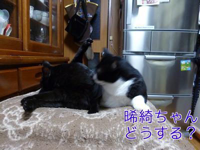 P1070720編集②.jpg