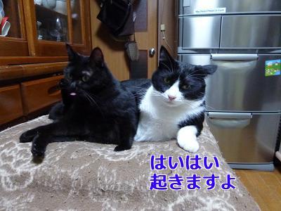 P1070724編集②.jpg