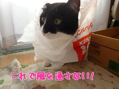 P1070873編集②.jpg