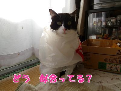 P1070875編集②.jpg