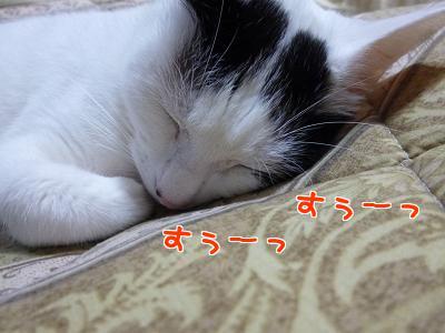 P1070947編集②.jpg