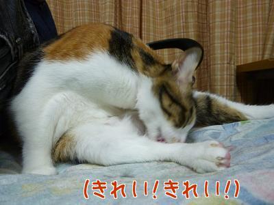 P1070964編集②.jpg
