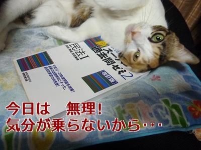 P1070994編集②.jpg