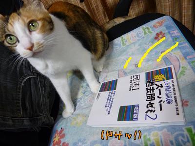 P1080002編集②.jpg