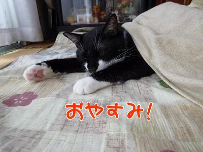 P1080254編集②.jpg
