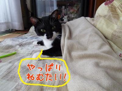 P1080264編集②.jpg