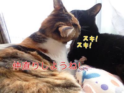 P1080329編集②.jpg