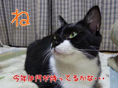 P1080363編集②.jpg
