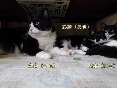 P1080483編集②.jpg