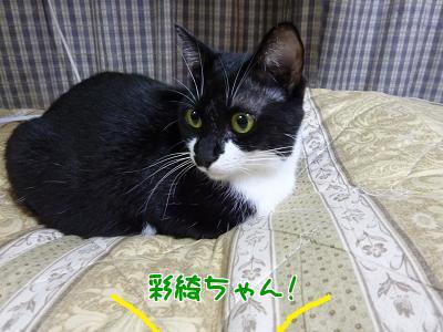 P1080925編集②.jpg