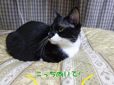 P1080926編集②.jpg