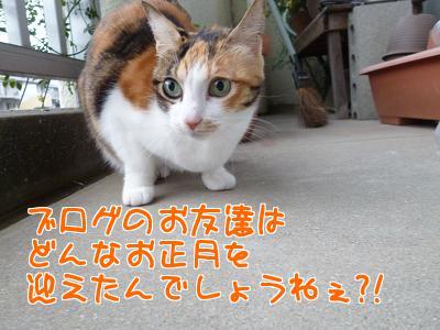 P1090350編集②.jpg