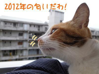 P1090364編集②.jpg