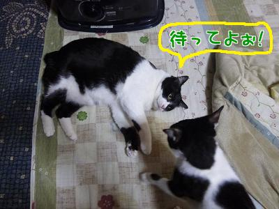 P1090641編集①.jpg