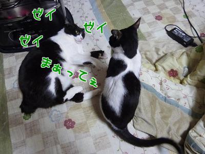 P1090645編集②.jpg