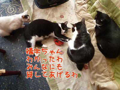 P1090768編集②.JPG