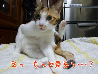 P1100081編集②.jpg