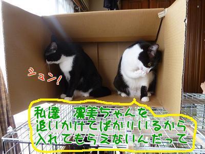 P1100236編集②.jpg