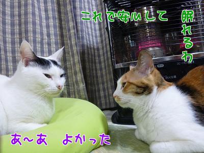 P1110198編集②.jpg