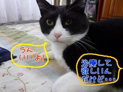 P1110359編集②.jpg
