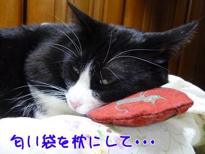 P1110640編集②.jpg