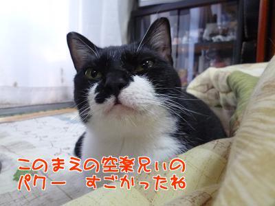 P1120314編集②.jpg