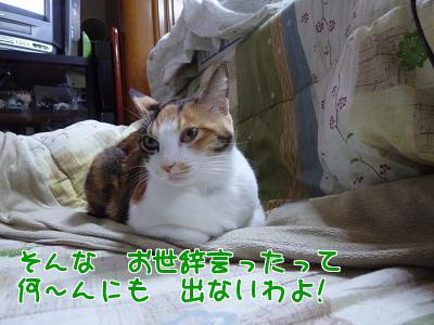 P1120325編集②.jpg