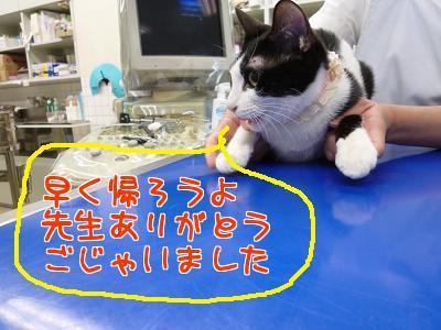P1130406編集②.jpg